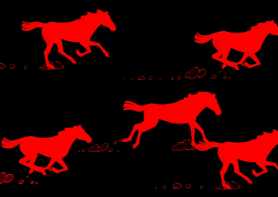 stallion00002