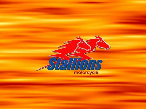 พรีเซนเทชั่น Stallion